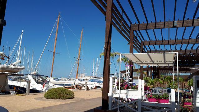 La bandera azul ondeará este verano en la playa de El Mojón, el Puerto Deportivo Marina de las Salinas y el Centro de Visitantes Las Salinas - 4, Foto 4