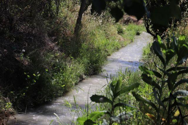 Huermur alerta de las intenciones de fumigar con glifosato las acequias y azarbes de la Huerta - 1, Foto 1