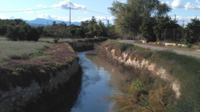 Huermur alerta de las intenciones de fumigar con glifosato las acequias y azarbes de la Huerta - 2, Foto 2