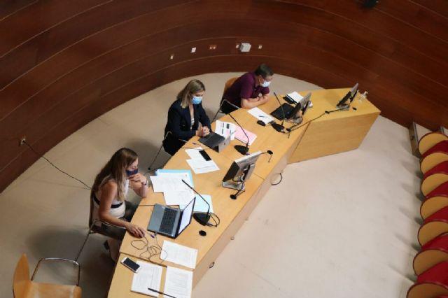 El Consejo de Servicios Sociales sitúa el foco en las personas sin hogar y en los mayores que viven en soledad - 2, Foto 2