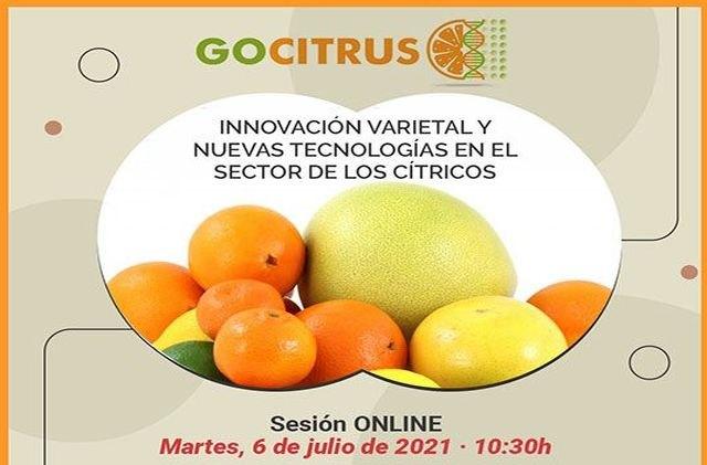 GOCITRUS organiza un evento online para analizar la innovación varietal y las nuevas tecnologías en el sector de los cítricos - 1, Foto 1