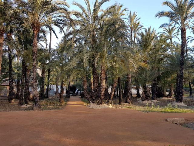 El Palmeral de Santiago y Zaraíche se convierte en un espacio 2.0 gracias a un proyecto de la Junta Municipal - 2, Foto 2