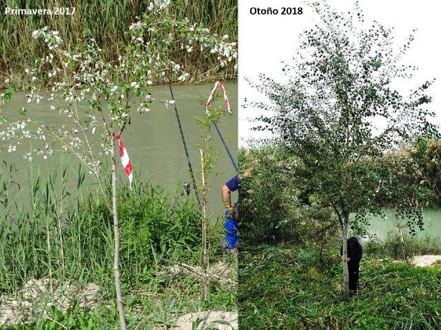 Aguas de Murcia y ANSE renuevan el convenio para el fomento de la biodiversidad en Murcia - 2, Foto 2