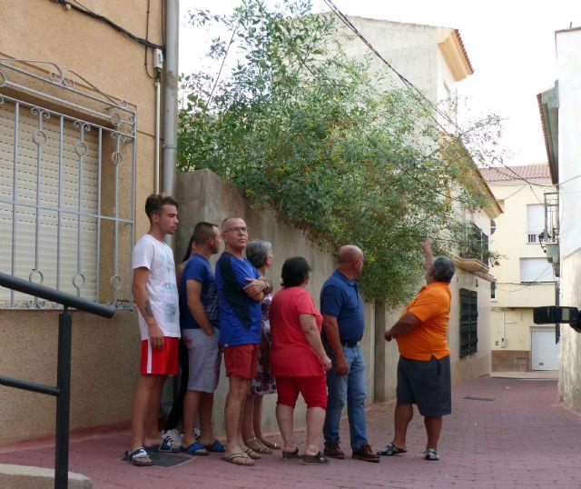 IU: Suciedad, maleza y abandono siguen siendo la tónica general en los solares de Lorca - 1, Foto 1