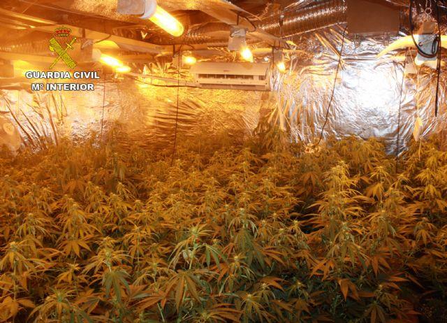 La Guardia Civil desmantela un punto de venta directa de marihuana a consumidores - 3, Foto 3