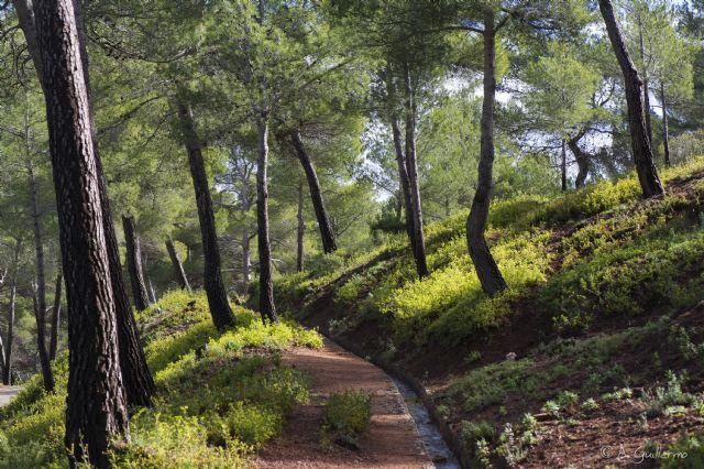 El Territorio Sierra Espuña celebra la renovación de la Carta Europea de Turismo Sostenible, Foto 1