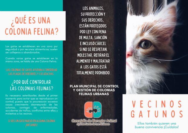 La Concejalía de Bienestar Animal del Ayuntamiento de Los Alcázares pone en marcha el Plan Municipal de Gestión y Control de Colonias Felinas - 1, Foto 1