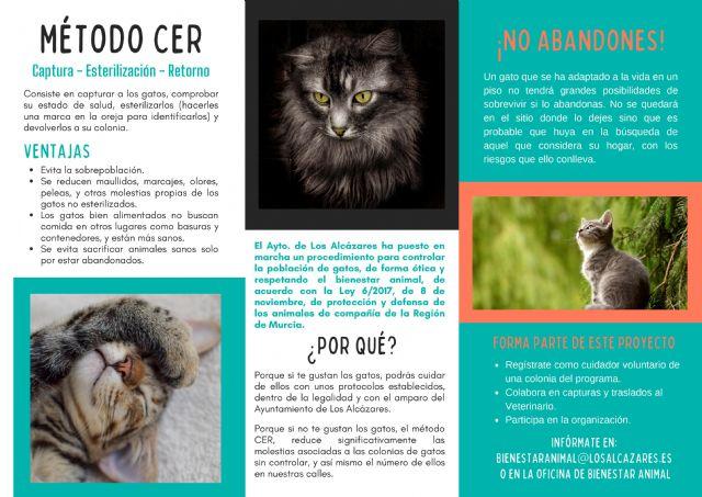 La Concejalía de Bienestar Animal del Ayuntamiento de Los Alcázares pone en marcha el Plan Municipal de Gestión y Control de Colonias Felinas - 2, Foto 2