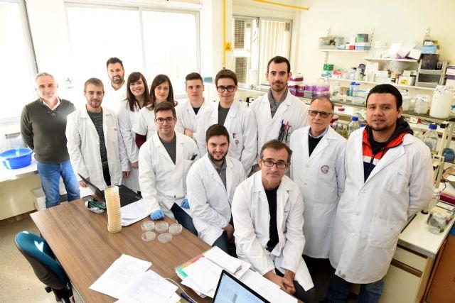 Las universidades de Murcia y Zaragoza, únicas de España en llegar al Departamento de Energía de los Estados Unidos en 2018 - 2, Foto 2