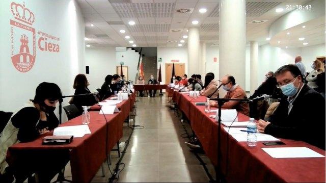 Los plenos ordinarios vuelven a celebrarse por videoconferencia a causa del aumento del covid - 1, Foto 1