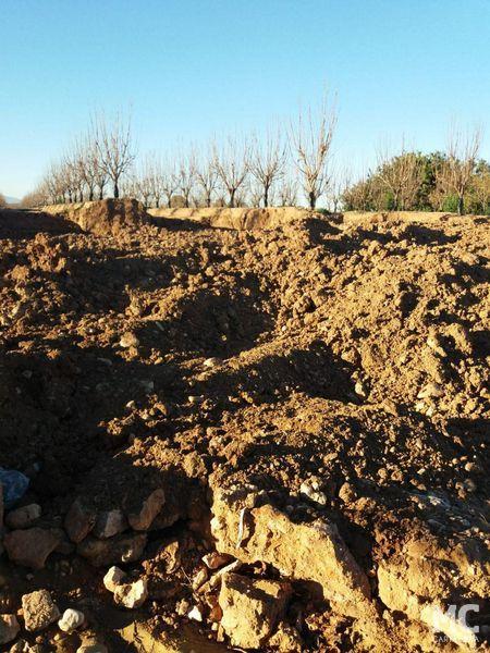 MC Cartagena solicitará que se restituya el cauce original de la Rambla de Miranda en el paraje de La Pedrera - 1, Foto 1