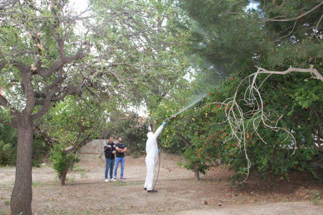 El Ayuntamiento realiza labores de fumigación para eliminar mosquitos en parques y jardines, Foto 1