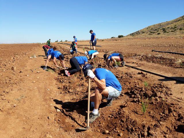 Los empleados de Hidrogea colaboran con ANSE plantando especies autóctonas para ayudar a frenar la aportación de nitratos al Mar Menor - 1, Foto 1