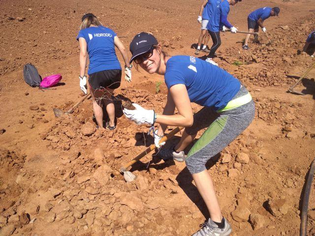Los empleados de Hidrogea colaboran con ANSE plantando especies autóctonas para ayudar a frenar la aportación de nitratos al Mar Menor - 2, Foto 2