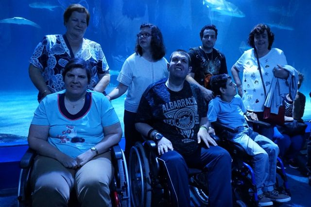 PADISITO made a trip to the Oceanografic of Valencia on the occasion of its 25th anniversary, Foto 7