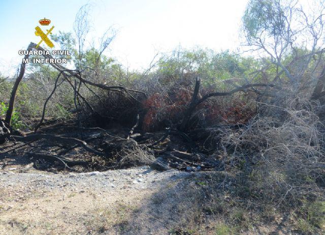 La Guardia Civil detiene a un octogenario como presunto autor de cuatro incendios forestales - 4, Foto 4