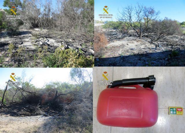 La Guardia Civil detiene a un octogenario como presunto autor de cuatro incendios forestales - 5, Foto 5