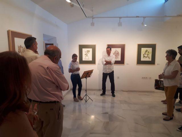 Rogelio Balibrea expone su obra 'Captación del color' en Puerto Lumbreras - 2, Foto 2