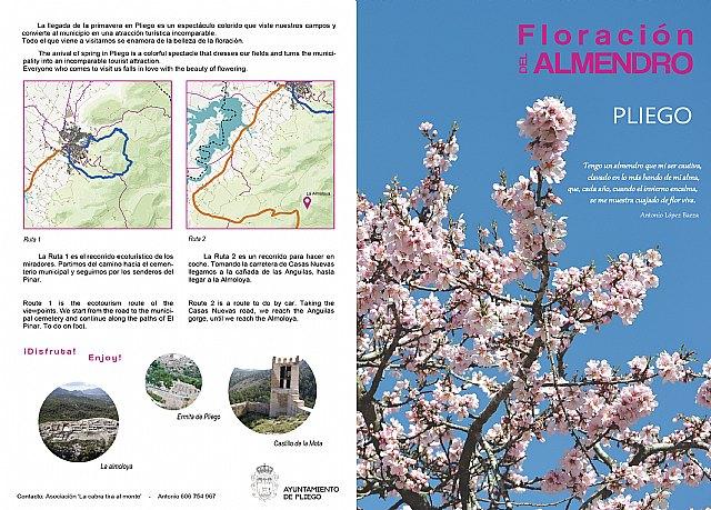 Ruta de la Floración en Pliego - 1, Foto 1