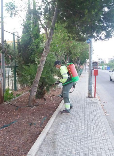 El Ayuntamiento de Beniel continúa las labores de fumigación contra todo tipo de plagas - 1, Foto 1
