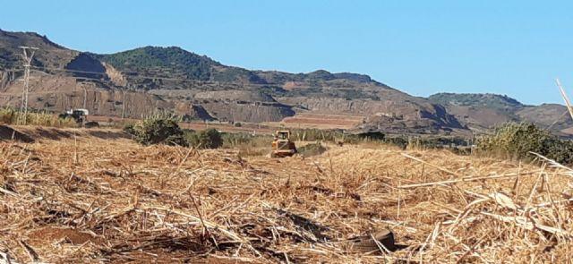 La Confederación Hidrográfica del Segura ha iniciado en agosto las labores de mantenimiento y conservación en los cauces del municipio de Cartagena - 2, Foto 2