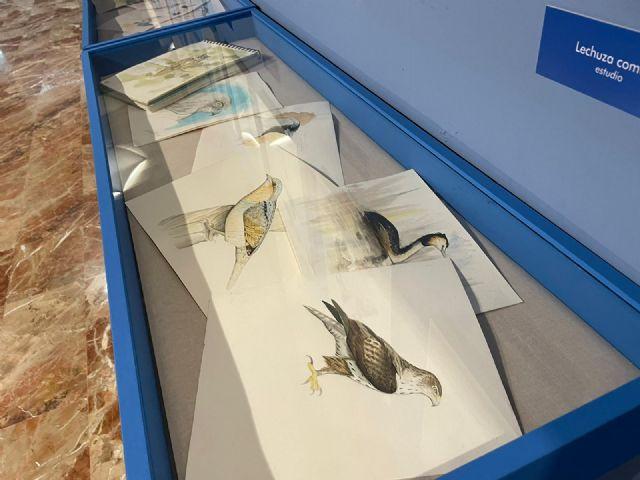 El Museo de la Ciencia dedica una exposición a las aves más emblemáticas del municipio - 2, Foto 2