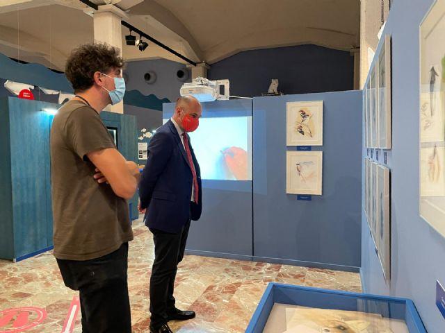 El Museo de la Ciencia dedica una exposición a las aves más emblemáticas del municipio - 3, Foto 3