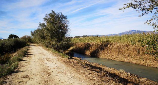 El Ayuntamiento, la CHS, la asociación amigos del patrimonio de Lorquí y ANSE sientan las bases para la recuperación ambiental de la ribera del río - 1, Foto 1