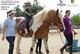Fundaci�n Cavalli llev� a cabo el programa
