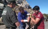 Liberan en Sierra Espuña un ejemplar de buitre leonado tras su recuperaci�n en el centro de fauna silvestre
