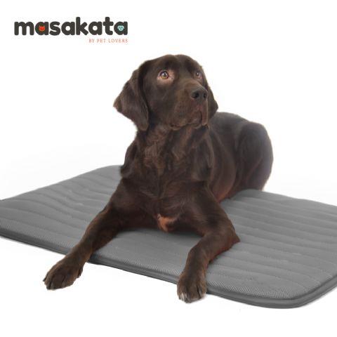 Nace una nueva marca de camas terapéuticas para mascotas: Masakata - 1, Foto 1