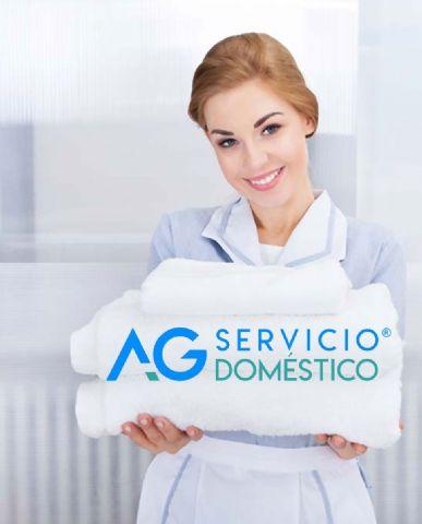 Importancia de los servicios domésticos por Servicio Doméstico AG - 1, Foto 1