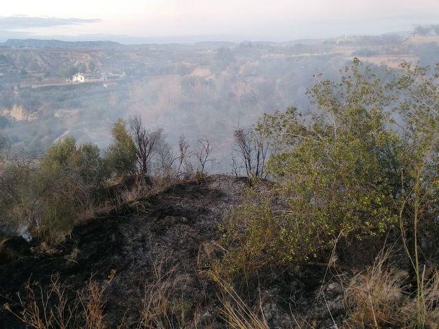 Incendio agrícola en Pliego - 1, Foto 1
