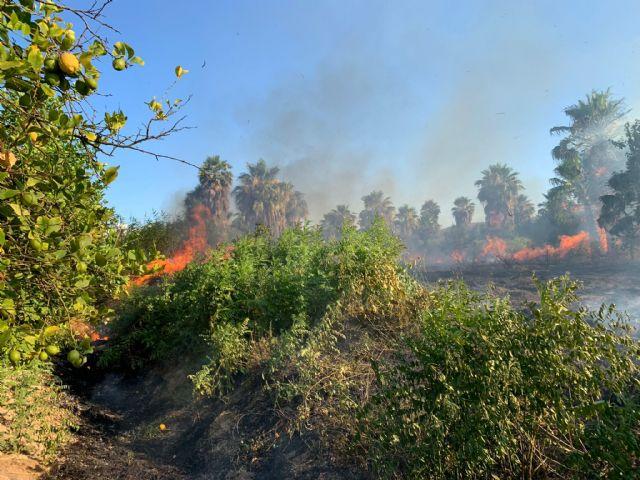 Bomberos trabajan en el incendio declarado en un huerto con viviendas cercanas en Beniel - 1, Foto 1
