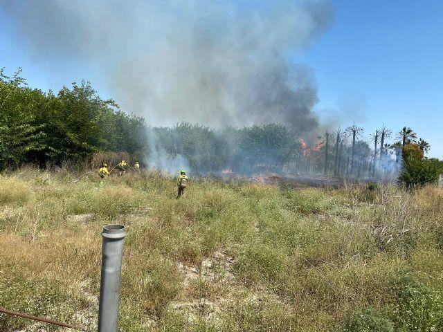 Incendio de cañas y matorral en el margen del río en la pedanía de La Algaida (Archena) - 1, Foto 1