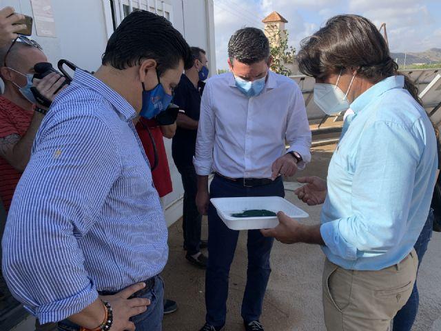 Cultivo de microalgas en San Javier - 1, Foto 1