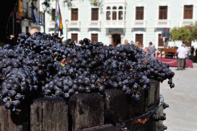 Bullas es poesía para los amantes del vino - 5
