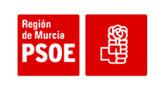 Los ayuntamientos gobernados por el PSOE harán un paro de cinco minutos el día 7 para los ciudadanos que no puedan desplazarse a  Madrid