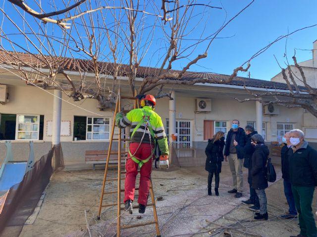 El Ayuntamiento pone a punto el arbolado de las escuelas infantiles del municipio apostando por los entornos naturales para los más pequeños - 2, Foto 2