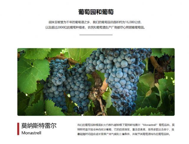 La DOP Jumilla presenta sus canales de comunicación en China - 4, Foto 4