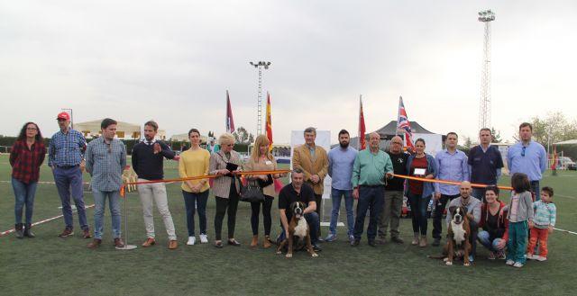 Más de 300 ejemplares de 50 razas en el VII Concurso Nacional Canino Ciudad de Puerto Lumbreras - 1, Foto 1