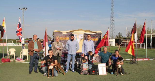Más de 300 ejemplares de 50 razas en el VII Concurso Nacional Canino Ciudad de Puerto Lumbreras - 2, Foto 2