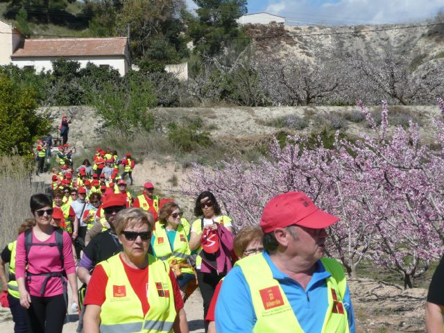 Más de 150 participantes de los Grupo 4-40 visitaron este sábado la floración de Cieza con motivo del VI encuentro que organiza el Servicio de Salud - 2, Foto 2