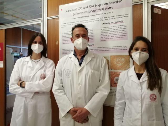 Científicos de la UMU desmontan uno de los dogmas de la reproducción - 1, Foto 1