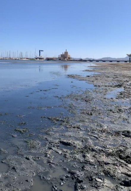 Denuncia de la presencia de un gas tóxico en la playa de los urrutias, por la materia acumulada - 5, Foto 5