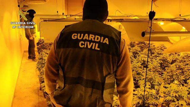 La Guardia Civil desarticula una organización criminal dedicada a exportar marihuana al resto de Europa - 2, Foto 2