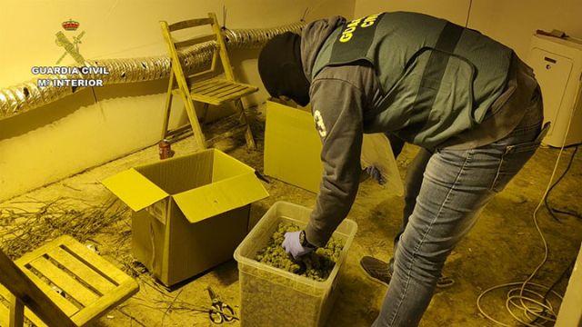 La Guardia Civil desarticula una organización criminal dedicada a exportar marihuana al resto de Europa - 3, Foto 3