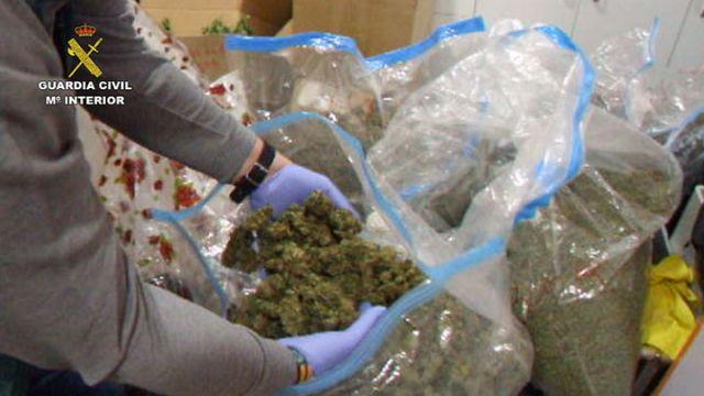 La Guardia Civil desarticula una organización criminal dedicada a exportar marihuana al resto de Europa - 4, Foto 4