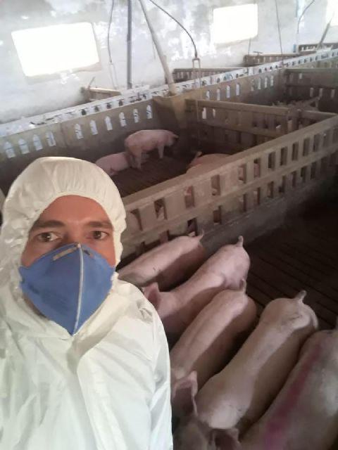 El Ayuntamiento de Puerto Lumbreras distribuirá 4.000 mascarillas entre los trabajadores del municipio, proporcionadas por la Delegación del Gobierno - 3, Foto 3