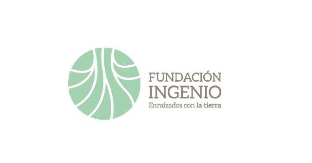 Nace la Fundación Ingenio, impulsada por 10.000 agricultores del Campo de Cartagena - 1, Foto 1